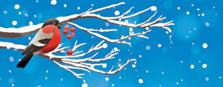 Создаем падающий снег средствами CSS